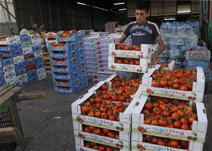 A worker arranges boxes of tomatoes at a wholesale vegetable and fruit market in the West Bank village of Beita, near Nablus September 2, 20