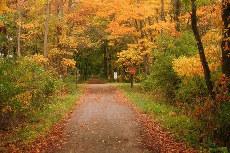 Fall is beautiful along the Kal-Haven Trial which meanders from Kalamazoo County all the way to South Haven on the Lake Michigan shore.