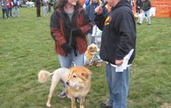 Q106 at C.A.H.S. Run & Walk For Animals (10-6-12) 13