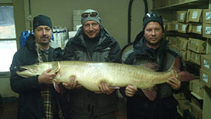 Joe Seeberger and friends show off their Prize. (photo courtesy DNR}
