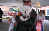 Doggie Costume Contest 2012 28