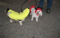 Doggie Costume Contest 2012 15