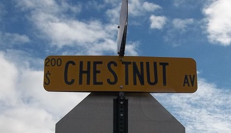 Chestnut Avenue sign, Marshfield WI