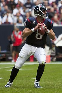Houston Texans QB Matt Schaub, who led his team to an OT win over Detroit on Thanksgiving Day, 2012.