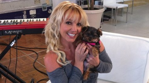 Image courtesy of Courtesy Britney Spears via Twitter (via ABC News Radio)