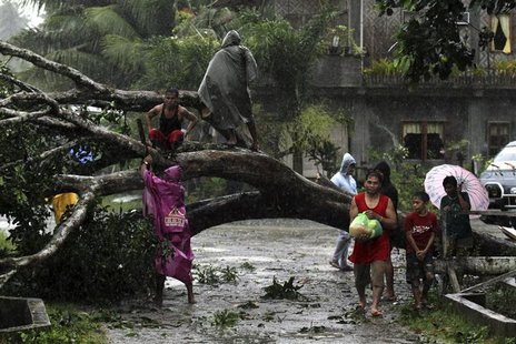 Residents saw an uprooted tree to clear the road after Typhoon Bopha hit Tagum City, southern Philippines December 4, 2012. Typhoon Bopha ma
