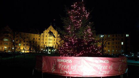 Tree of Love with its pink lights ablaze