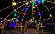 Marshfield Rotary's Winter Wonderland 2012! 14