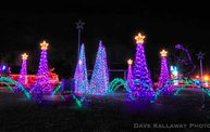 Marshfield Rotary's Winter Wonderland 2012! 10
