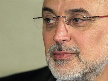 Iranian Foreign Minister Ali Akbar Salehi attends a news conference after a meeting regarding the Syrian crisis, in Cairo September 17, 2012