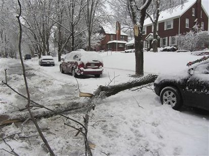 A broken tree branch is seen on a snow covered residential street following a winter storm in Omaha, Nebraska, December 20, 2012. The first major winter storm of the year took aim at the U.S. Midwest on Thursday, triggering high wind and blizzard warnings across a widespread area, and a threat of tornadoes in Gulf Coast states to the south. REUTERS/Stringer