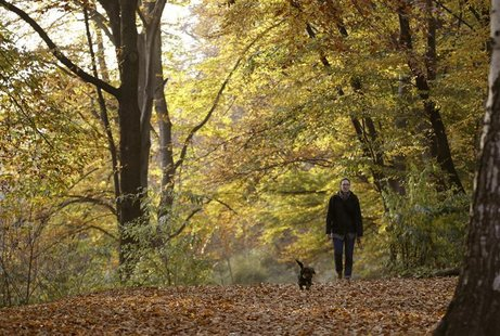 A woman and her dog walk along trees during a sunny autumn day in a park at Berlin's Wilmersdorf district November 7, 2011. REUTERS/Fabrizio