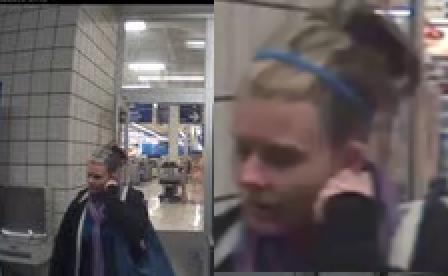 Female suspect in purse snatching.