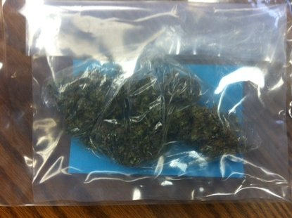 Police Photo of marijuana seized from Portage Teenager's Jeep.