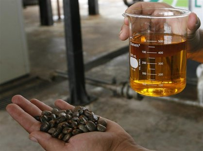 A worker shows a sample of biodiesel made from castor beans (L) at a biodiesel refinery in Iraquara, 310 miles (500 km) west of the Bahia st