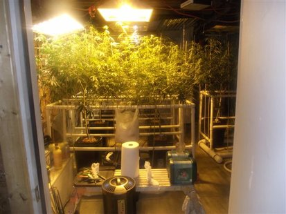 One of the four rooms they were using to grow the marijuana.
