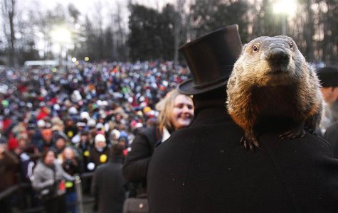 Groundhog co-handler Ron Ploucha holds Punxsutawney Phil in front of a record crowd estimated at 35,000 after Phil's annual weather predicti