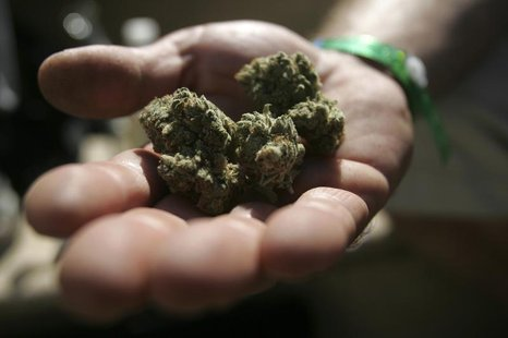 An attendee holds marijuana buds at the International Cannabis & Hemp Expo in Oakland, California September 3, 2011. REUTERS/Mathew Sumner