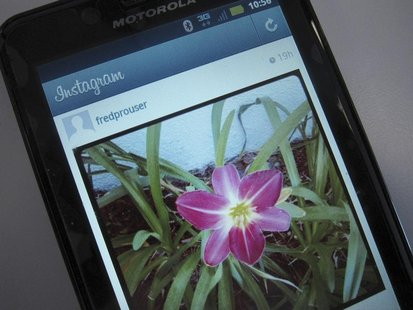 A photo illustration shows a picture of a flower taken with the photo-sharing application Instagram on the screen of an Android mobile phone