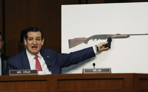 U.S. Senator Ted Cruz, (R-TX), holds a plastic hand grip in front of a picture of a hunting rifle as he questions NRA CEO Wayne LaPierre (no