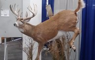 Wisconsin Deer Classic and Hunting Expo 2013 3