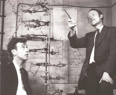 Francis Crick (R) with James D. Watson, co-discoverers of the structure and function of DNA, are shown in this image taken circa 1953 in thi