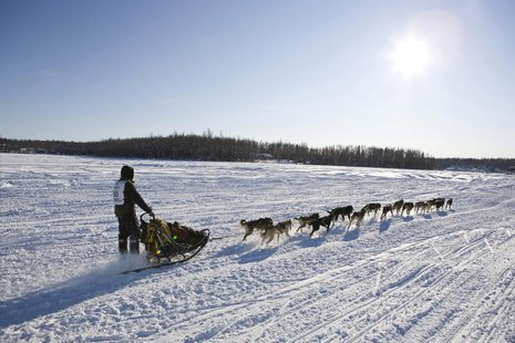 Brent Sass of Fairbanks, Alaska, takes his team towards Nome at the official re-start of the 40th Iditarod Trail Sled Dog Race in Willow, Al
