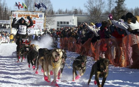 Defending Iditarod Champion Lance Mackey runs his team up the starting chute of the official start of Iditarod Trail Sled Dog Race in Willow