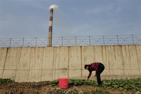 A resident picks vegetables at a vegetable patch next to a smoking chimney of Wuhan Iron And Steel Corp, in Wuhan, Hubei province, March 6,