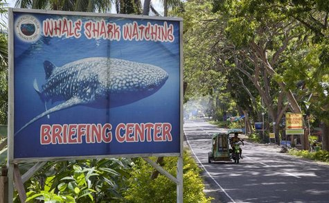 A sign advertising whale shark watching is pictured as a tricycle passes by in the village of Tan-awan, Oslob, in the southern Philippines i