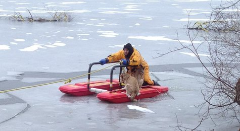 Rescue crews used a pontoon device specifically designed for ice rescues that was pulled to shore by rope..