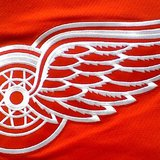 Red Wings logo.