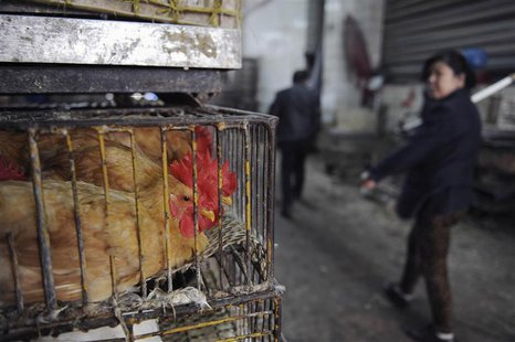 A woman walks by cages of poultry that are for sale at a market in Hefei, Anhui province, April 1, 2013. REUTERS/Stringer (CHINA - Tags: HEA