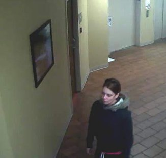 theft suspects pic 3