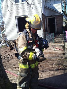 Public Safety Officer rescues kitten. Fire gutted home in the background.