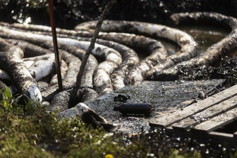 Spilled crude oil is seen in a drainage ditch near Starlite Road in Mayflower, Arkansas March 31, 2013. REUTERS/Jacob Slaton