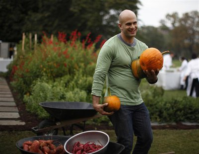 White House Chef Sam Kass drops freshly harvested pumpkins into a wheelbarrow during the fall harvest of the White House Kitchen Garden at t