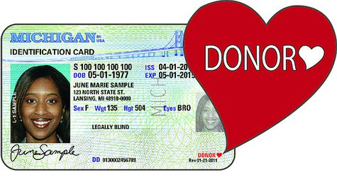 What an organ donor's license might look like.