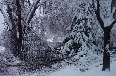 Ice and snow have toppled trees throughout Sioux Falls 4/12/13 - KELO file photo