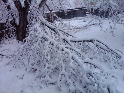 Ice storm damage is widespread throughout Sioux Falls 4/12/13 - KELO file photo