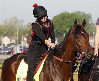 Exercise rider Jenn Patterson gives Kentucky Derby hopeful Orb a pat before galloping on the track during morning workouts at Churchill Down