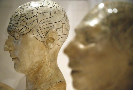 Plaster phrenological models of heads, showing different parts of the brain, are seen at an exhibition in London March 27, 2012. REUTERS/Chr