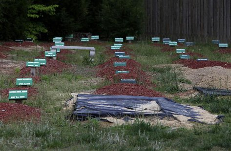 Graves are seen at Al-Barzakh Islamic Cemetery in Doswell, Virginia, May 10, 2013. REUTERS/Yuri Gripas