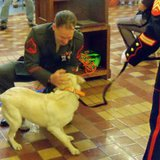 Sgt. Gundlach is reunited with Casey (Photo: Radio Iowa/Wisconsin Radio Network)