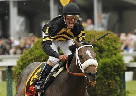 Oxbow with jockey Gary Stevens in the irons takes first place at the 138th running of the Preakness Stakes at Pimlico Race Course in Baltimo