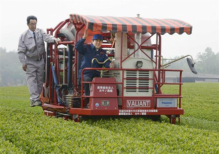 Japan's Prime Minister Shinzo Abe (C) has a go at cropping tea leaves in Kitsuki, Oita prefecture, in this photo taken by Kyodo May 18, 2013