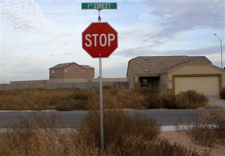 Newly constructed homes in an unfinished subdivision is surrounded by weeds in Coolidge, Arizona December 6, 2010. REUTERS/Joshua Lott