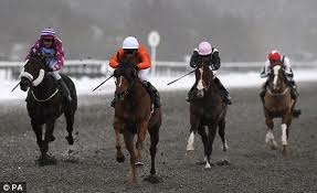 Horse racing picture from the daily mail uk