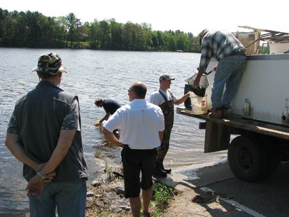 Restocking fish at McDill Pond