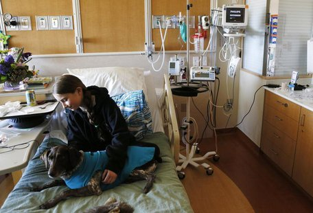 Lily Sroboda, 11, a patient at Childrens Hospital Colorado, gets a visit from Brownie, a therapy dog missing a foot in Aurora April 14, 2013